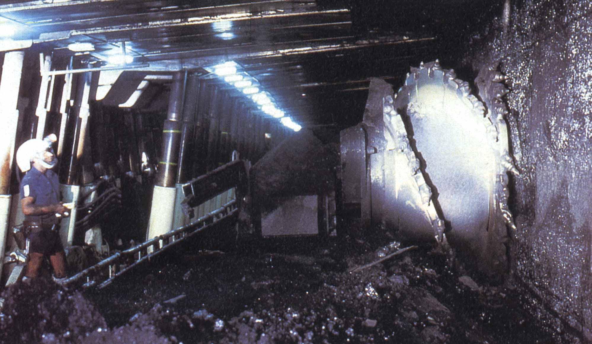 Examples Of Coal Experience